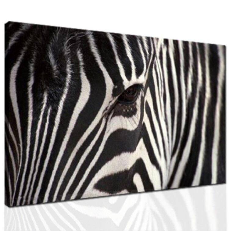 Zebra print room decor ebay for Room decor zebra print