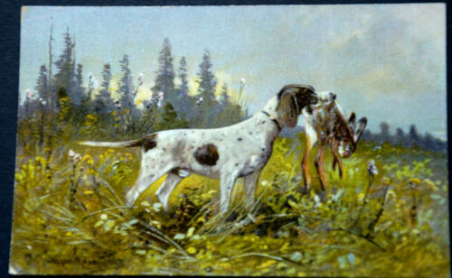 49525 Ak Hunting Dog With Erlegtem Hares IN Maul On Meadow