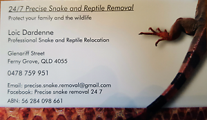 24/7 precise Snake removal Brisbane and Moreton Bay council Ferny Grove Brisbane North West Preview