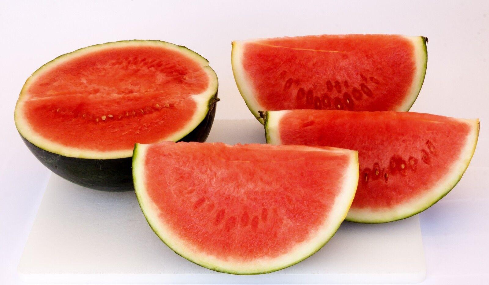 🍉 10 Samen Wassermelone Sugar Baby Melone Wassermelonen Melonen