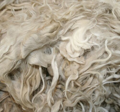 "Suri Alpaca Fleece for Crafts Dolls Raw GradeA 50g+ White & Colours 6-8"" Long"