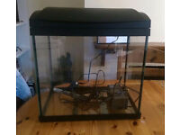 40 Litre fish tank for sale