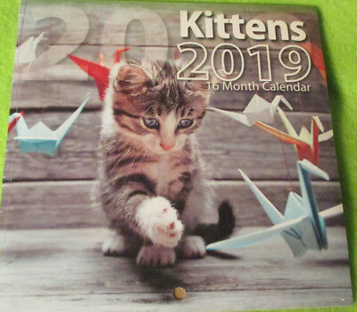 2019 Cat Kittens Monthly Mini 6x6 Wall Hanging Calendar -16-month  Bachmann