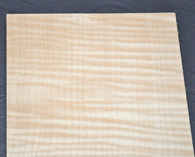 Curly Maple Raw Wood Veneer Sheets 6 X 23 Inches 142nd   7631-13