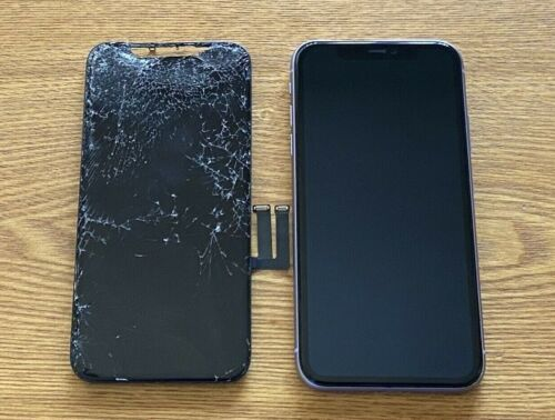 Apple Iphone 11 Cracked Glass Broken Lcd Screen Repair/fix Mail In Service Fast!