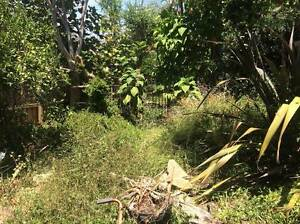 Garden work traded for free accommodation Warriewood Pittwater Area Preview