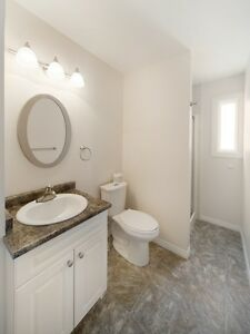 RENT A 3 BEDROOM FOR THE PRICE OF 2 - Close to WEM! Edmonton Edmonton Area image 5