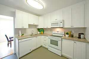 1 bedroom apartment for rent! CALL TODAY! Sarnia Sarnia Area image 7