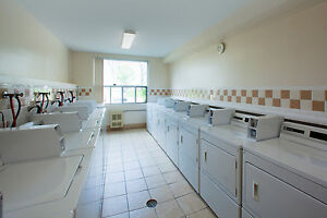 1 bedroom apartment for rent! CALL TODAY! Sarnia Sarnia Area image 11
