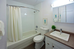 1 bedroom apartment for rent! CALL TODAY! Sarnia Sarnia Area image 8
