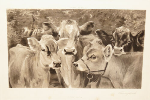 4 VINTAGE 1890S PASTORAL COUNTRY COW PRINTS 2 AT 11 1/2 X 15, 2 AT 10 1/2 X 14