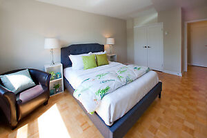 1 bedroom apartment for rent! CALL TODAY! Sarnia Sarnia Area image 4