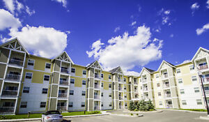 Over $2000 in CASH SAVINGS! 1 & 2 Bedroom Apartments