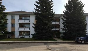 Large 2 bedroom apartment with 1 1/2 bath