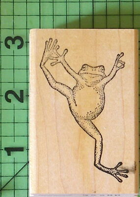 Leaping Tree Frog Rubber Stamp By Ann-ticipations  - $5.95