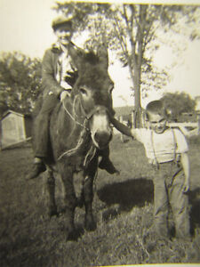 Small-Antique-Photo-Country-Farm-Boys-Take-Donkey-Ride
