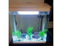 Aquarium Tank 30L White Fish Tank 30 Litres