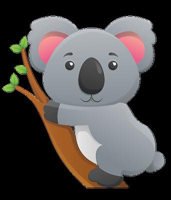 Lofty Koala