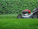 Do you need your grass cut???