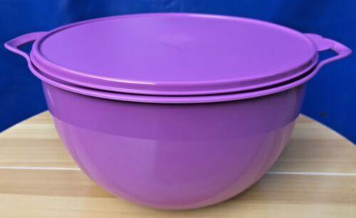 new Tupperware Thatsa Jumbo Bowl 42-CUP (10L) -- Mulberry
