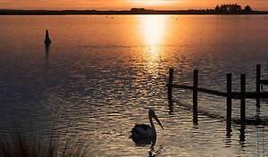 $190/week. Beautiful, quiet, absolute waterfront flat. Hindmarsh Island Alexandrina Area Preview