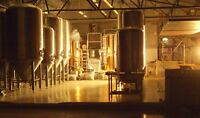 Interested in opening a Brewery?