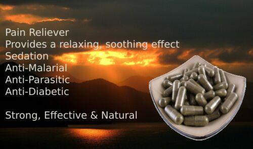 High Quality Akuamma (Picralima Nitida)20:1 Extract 100 Capsules Free Shipping!