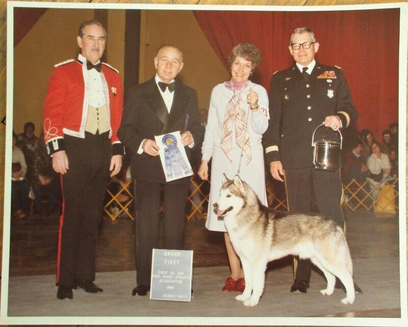 Siberian Husky 1980 Champion Dog Show 8 x 10 Photograph: