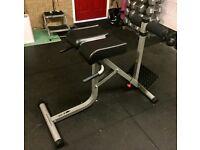 Bodycraft F670 Romain Chair/Hyper Extensions/GHD/Tricep Dips