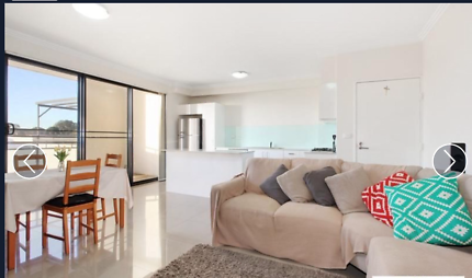 Big room to rent for nepalese in strathfield