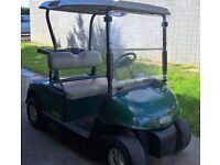 48V ELECTRIC GOLF BUGGY CART 2009 EZGO RXV Excellent Condition