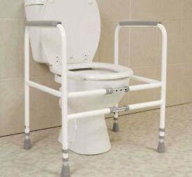 Toilet support frame
