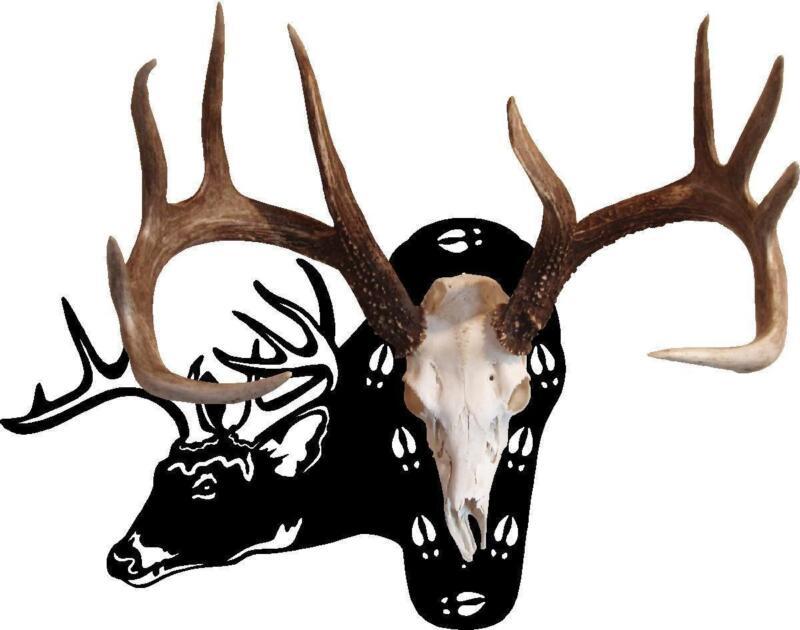 European Deer Mount Plaque Ebay