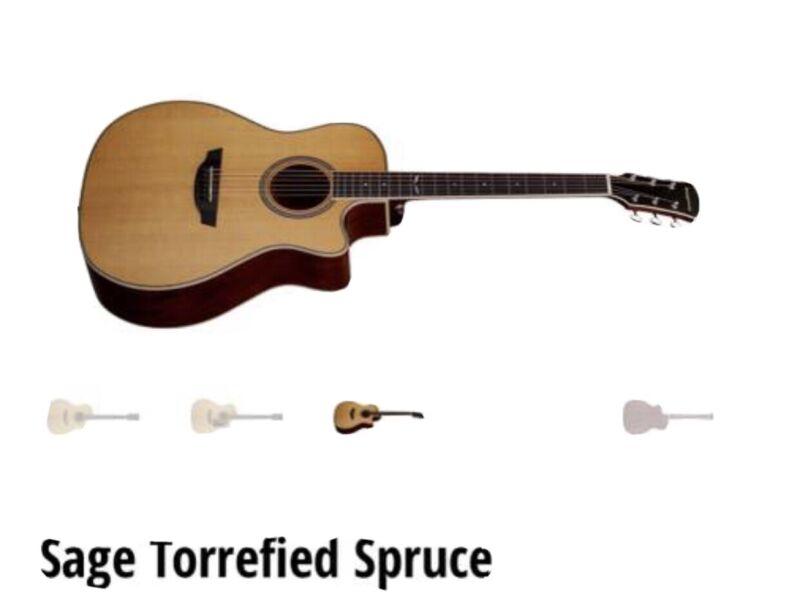 Orangewood Sage Spruce Guitar