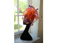 50% off Hats and Fascinator's
