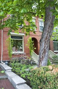 .Beautiful 4 Bed Family Home in Downtown – 90 Amelia St
