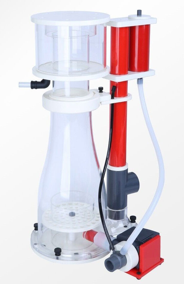 what is the best protein skimmer