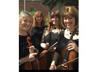 LooseStrings Quartet available for weddings, parties. Special events!
