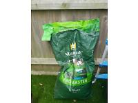 Grass seed top quality