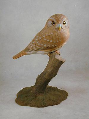 Ferruginous Pygmy Owl Original Wood Carving