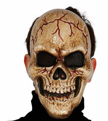 Menschlicher Schädel Gesicht Plastik Maske Realistische Halloween Skelett Kostüm