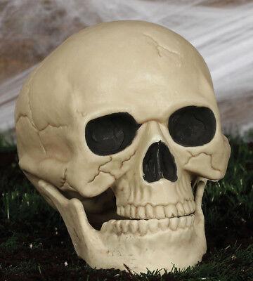 Lebensgröße Schädel Requisit Unheimlich Friedhof Skelett Halloween Dekoration