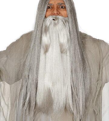 Lang Grau Bart Dumbledore Merlin Gandalf Alter Mann Kostüm Zauberer Bart