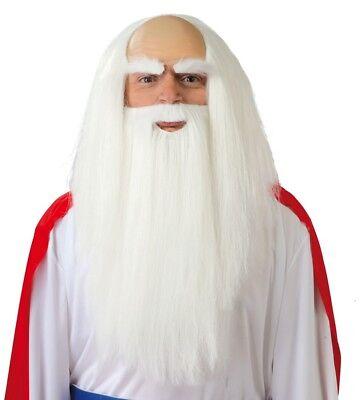 Erwachsene Halloween Druide Zauberer Weiß Perücke und Bart Set Kostümzubehör
