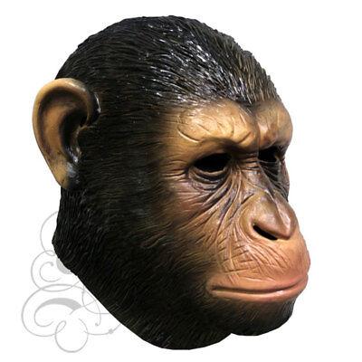 ische Affe Film Thema Halloween Requisiten Herrenabend Tier (Realistische Affen-kostüm)