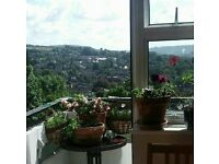 2 bed in Bath for your 2/3 bed Bath/Wilts/Somerset/Dorset/Glos