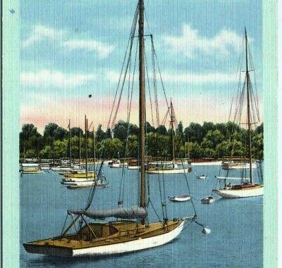 Boat Harbor Jackson Park Chicago boats dock ships sailboats IL Vintage Postcard