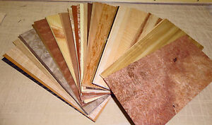 """Wood veneer sample pack with 50 pieces 4"""" x 9"""" (variety ..."""