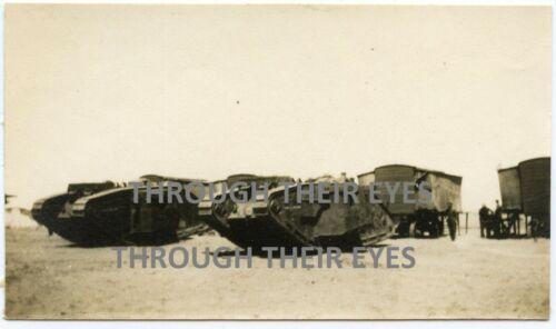 Original WWI Photo British tanks In Palestine Battle of Gaza 1917 WW1 photograph