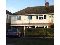 4 bedroom semi-detached house for sale - no chain- Kirby Muxloe - offers in region of